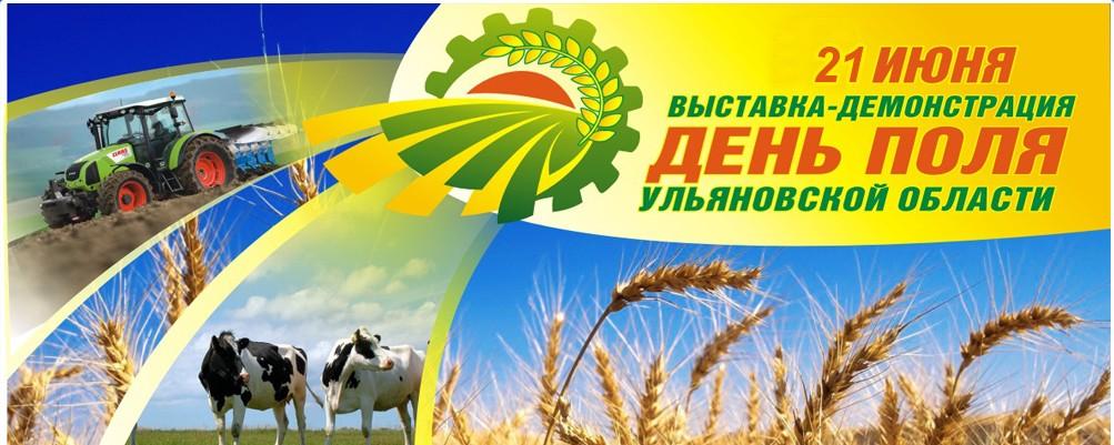 «День Поля Ульяновской области - 2015»